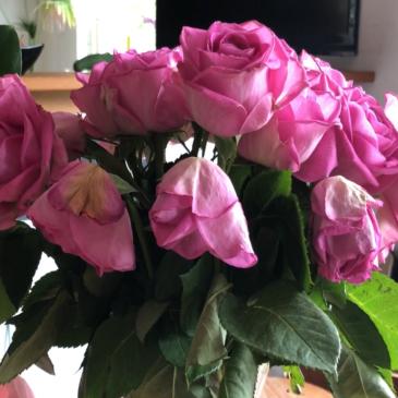 Håll rosorna vid liv längre
